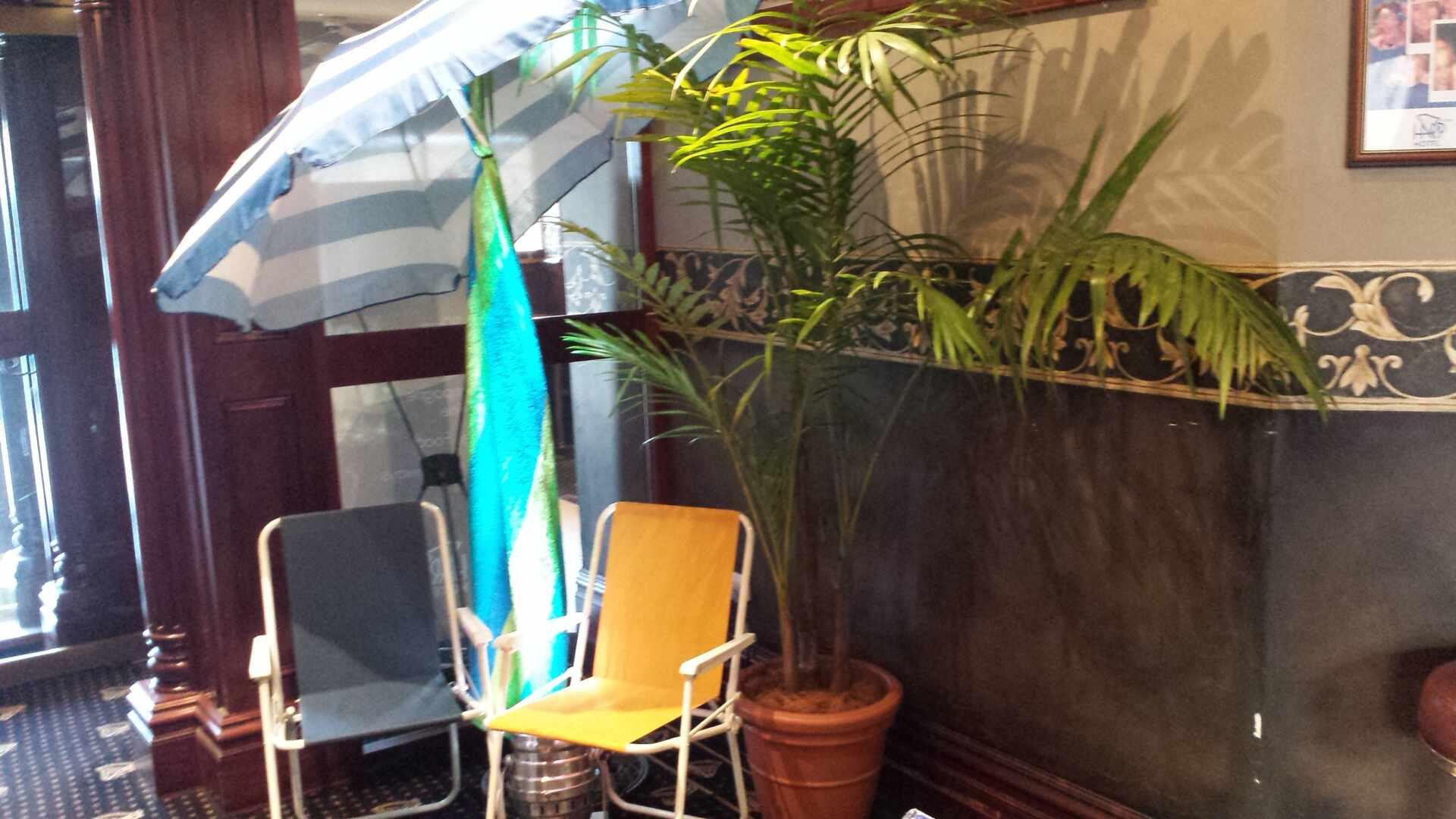 , Plants Hire Melbourne